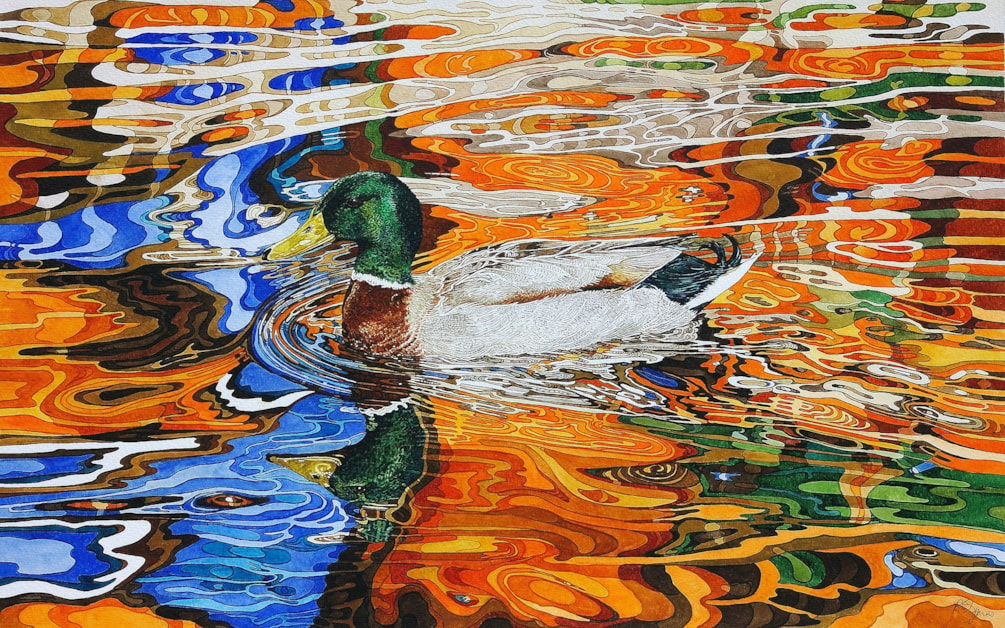 Duck in autmn coloured reflection