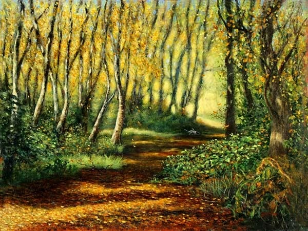 Risley Moss Cheshire.
