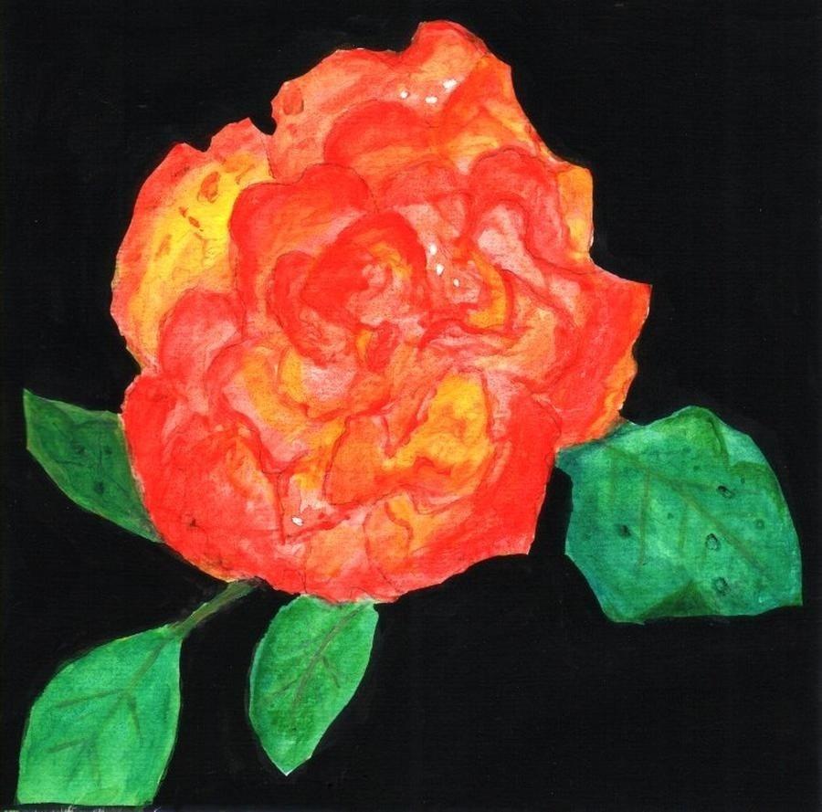 Rose-Tequilla Sunrise