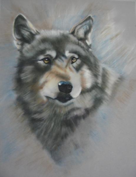 Wolf eworkshop