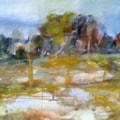 Swanland spring