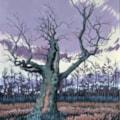 February Oak Tree Sherwood Forest
