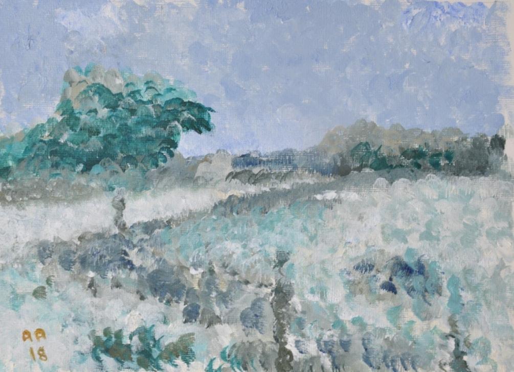 Towards Sandwich - Winter