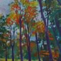 Amber shade