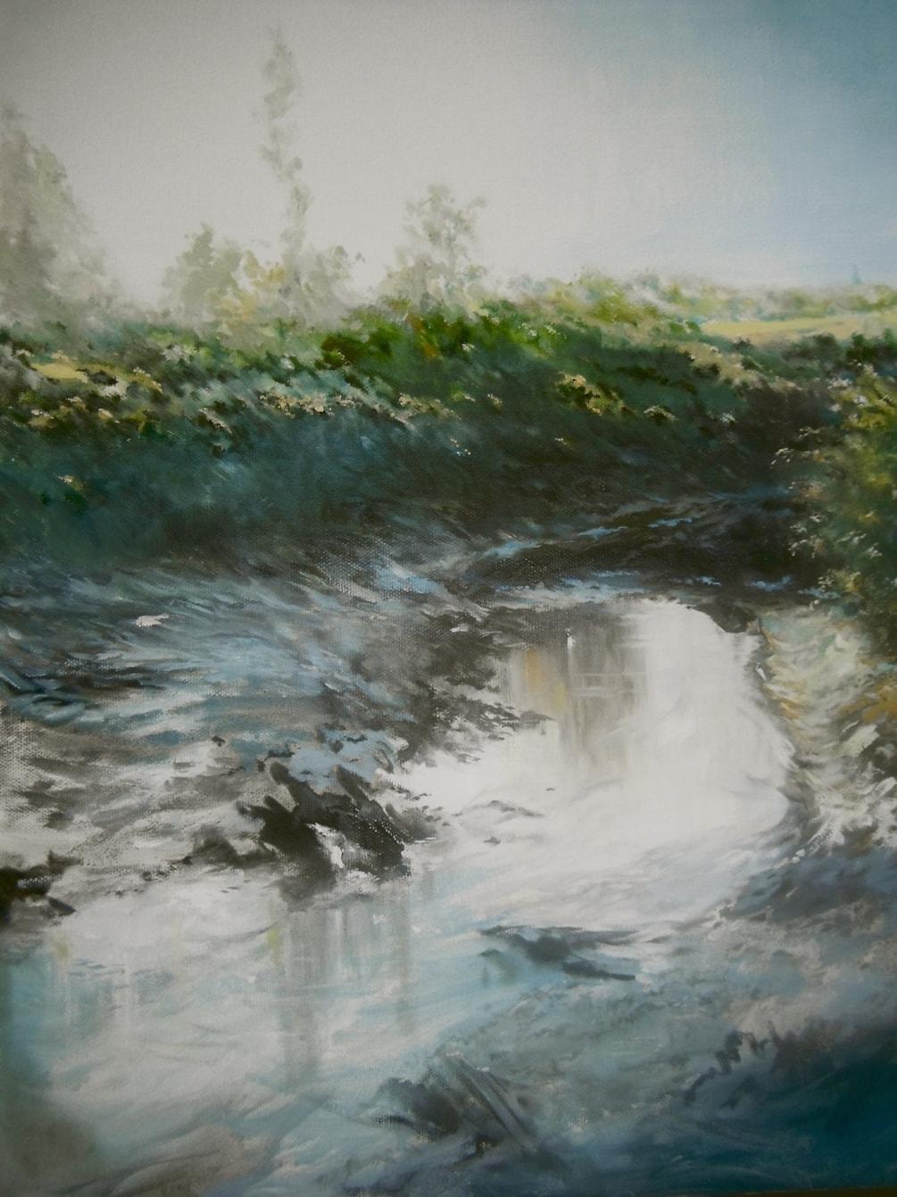 Heron,  Turanga Creek Whitford