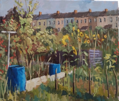 Sunflowers at the Allotment