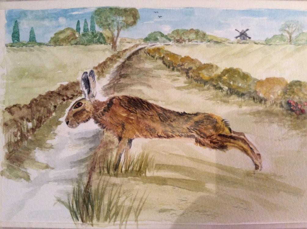 Yoga Hare