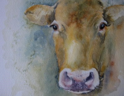 Valley cow
