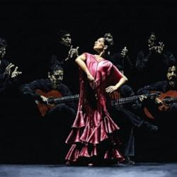 Bailarina orgullosa del flamenco