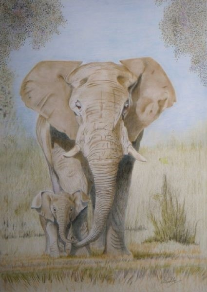 African Elephant and proud father