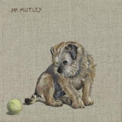 Mr Mutley