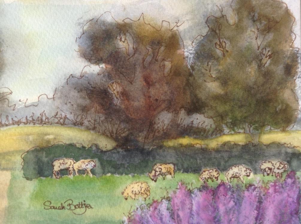 Sheep In The Meadow (ii)