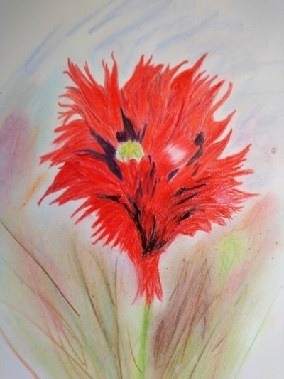 Fiona's Poppy (possibly the worse work I've ever done!)