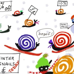Winter snails - extended !