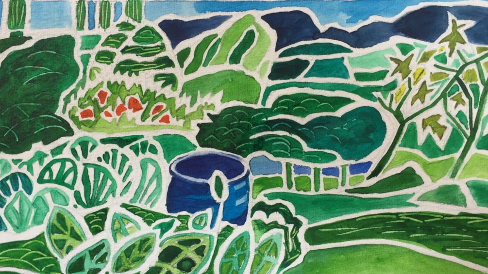My Cumbrian garden