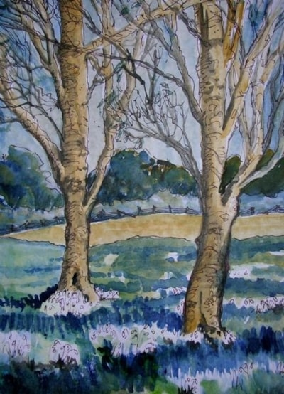 Snowdrops near Walsingham