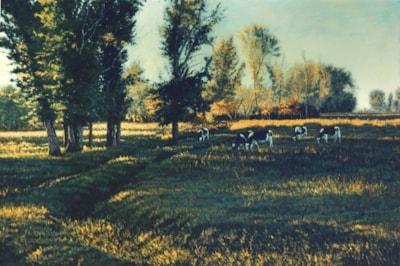 Rural Daybreak