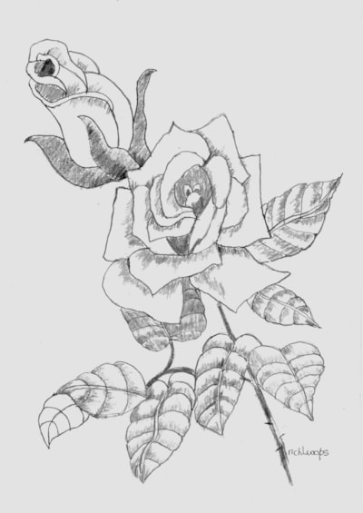 Just a Rose Practice