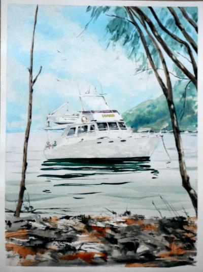 Commission for M.V.Argo... Whitsunday Islands, Queensland.