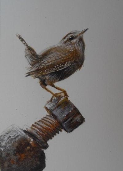 Jenny Wren on bolt