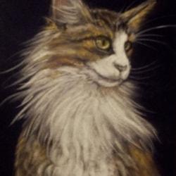 Pastel cat 2