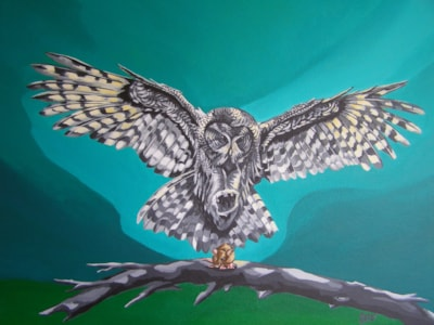 Owl and Mouse. 2016