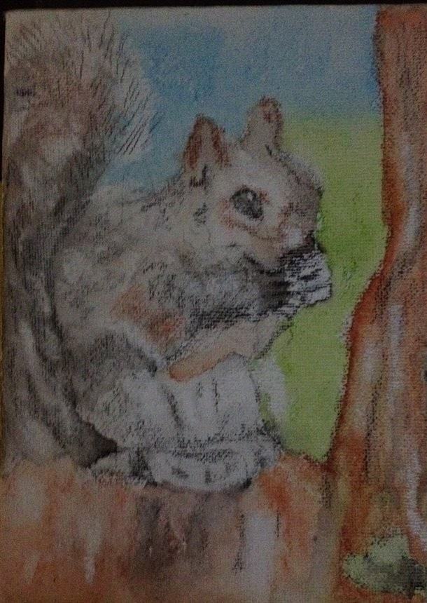 """Squirrel Nibbling"""