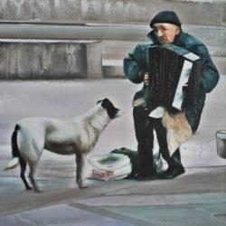 DOG LOVER MUSIC