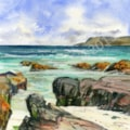 Seal Bay and Greian Head