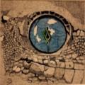 'gecko eye'