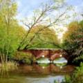 Bridge over the River Lodden