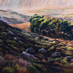 Evening light and summer mists - Ilkley Moor, West Yorkshire