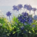 Agapanthus and Daisies