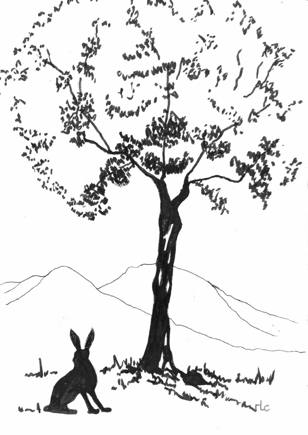A Hill, A Hare and a Tree