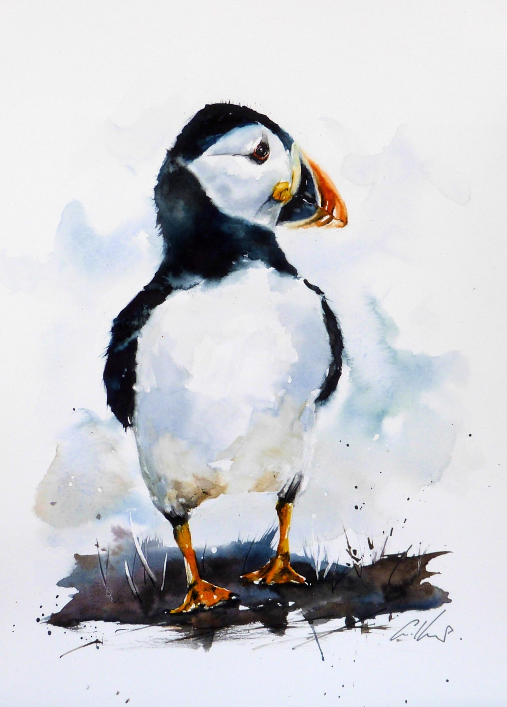 A Puffin, watercolour by Graham Kemp. 1.