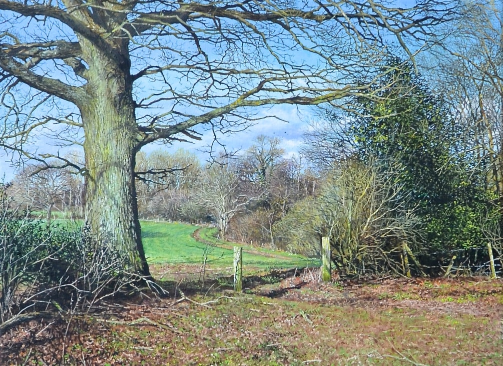 A Sussex scene 30 cms x 40 cms