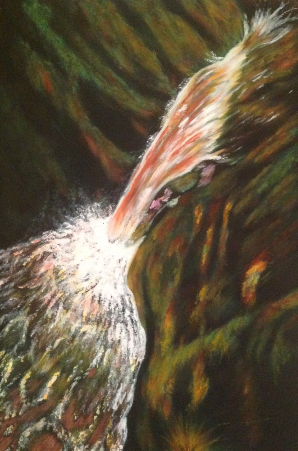 Aira Falls 2 Sept 19 £390