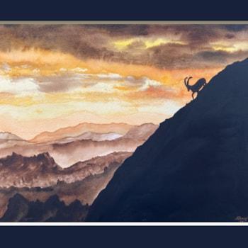 Alpine Ibex_1F