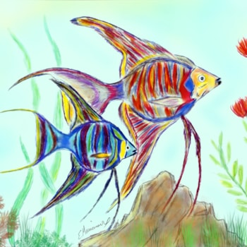 Angel Fish 001