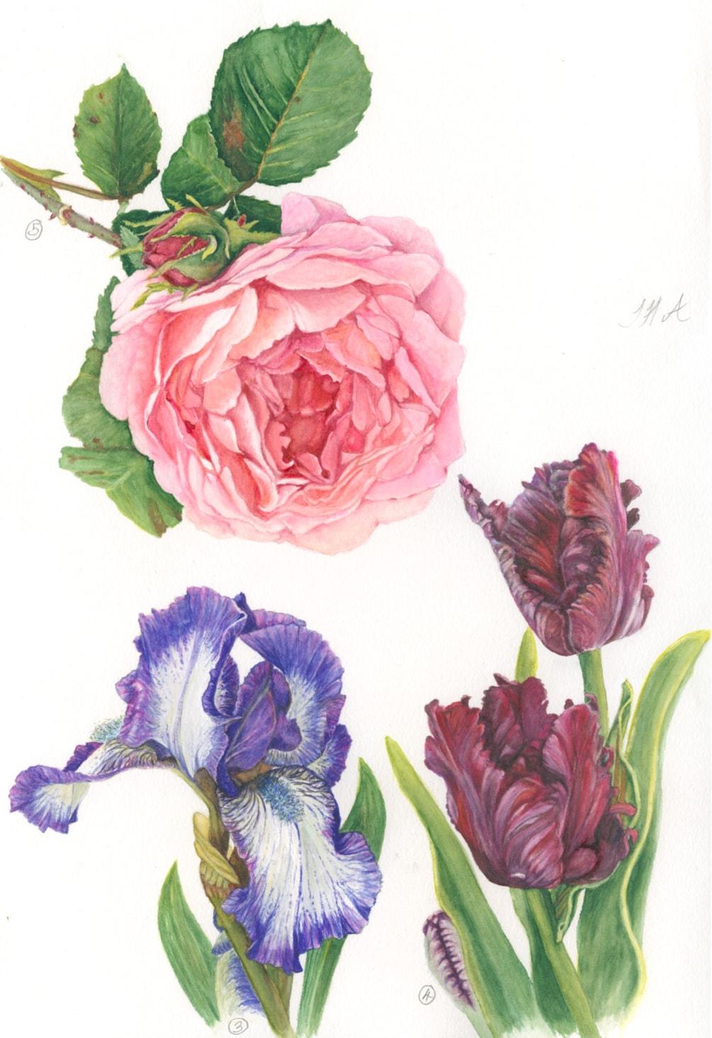 Anna Mason Flowers