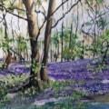 April Woodland