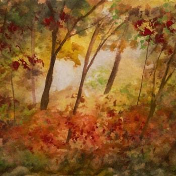 Autumn Colours 72dpi