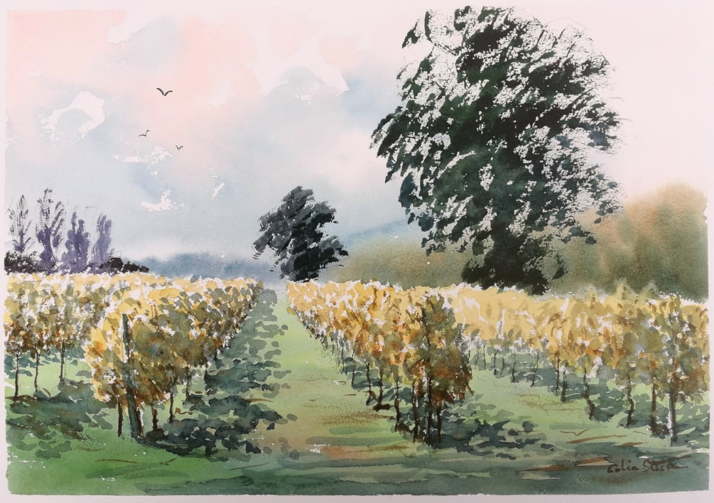 Autumn Vines, Galleywood Vineyard