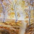 Autumn Woodlands mr