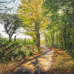 Autumn's Gentle Drift, Penrose