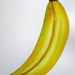 Banana MD220521 v1