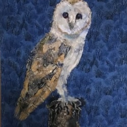 Barn Owl Finished December 10th 2019