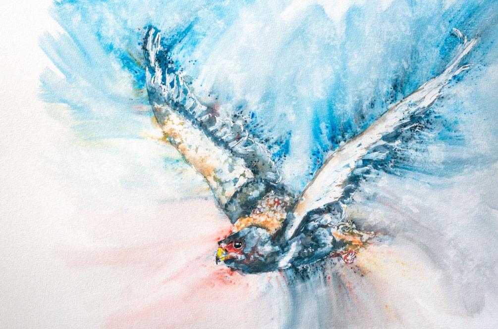 Bateleur Eagle '21-1