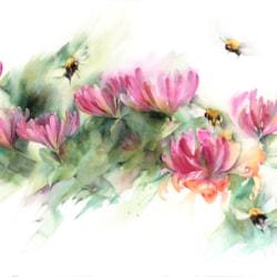 Bees on honeysuckle