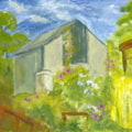 Behind the Allotment shed
